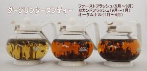 業務用紅茶ダージリンシーズンティー|業務用紅茶ならティークラブ