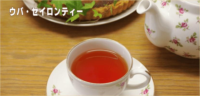 ウバ・業務用紅茶