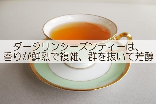 業務用紅茶ダージリン