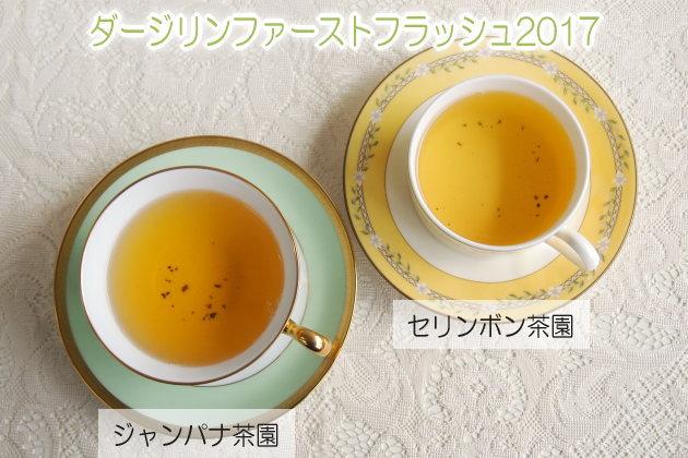 ファーストフラッシュ2017【セリンボン茶園】、【ジャンパナ茶園】