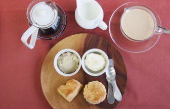 ミルクティーのミルクはどれくらい入れるのが美味しいのか?