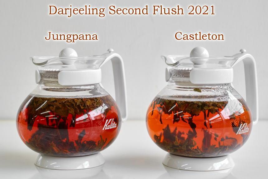 ダージリンセカンドフラッシュ2021(夏摘新茶)販売開始